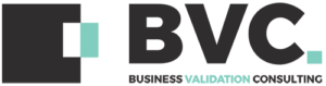 Business Validation Consulting